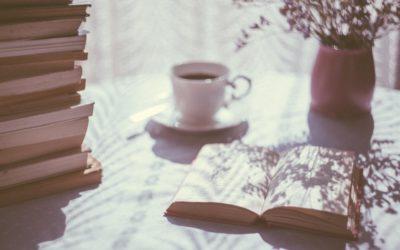 """LeseLust – Mein erster Roman """"Störfahrt"""""""